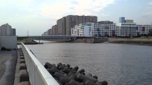 高洲海浜公園 シーバス釣りポイント おすすめルアーは!?
