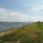 荒川シーバス釣りポイント【荒川砂町水辺公園】を紹介します!