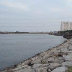 旧江戸川シーバス釣りポイント【右岸下流域】を紹介します!
