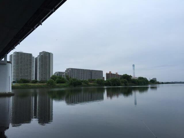 多摩川ガス橋シーバス釣りポイント おすすめ実績ルアーはこれ!?