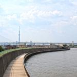 中川シーバス釣りポイント【 平和橋 】を紹介します!