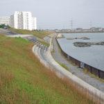 旧江戸川シーバス釣りポイント【左岸下流域】を紹介します!