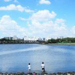 京浜運河シーバスポイント【大井ふ頭中央海浜公園】
