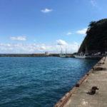 興津西港アオリイカ釣りポイント おすすめの攻略法も紹介!