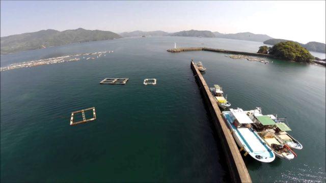 行野浦漁港アオリイカ釣りポイント エギングで1kg超えのアオリイカが狙える!