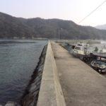 大三島 瀬戸港 アジ釣りポイント