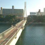 京浜運河シーバス釣りポイント【かもめ橋】を紹介していきます!マイクロベイトを攻略すれば二桁の釣果も可能!
