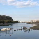 平潟湾シーバス釣りポイントを紹介していきます!バチ抜けパラダイス!おすすめルアーは??