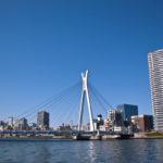 隅田川(中央大橋・相生橋)都市河川で手軽にシーバスを狙え!バチパターンで爆釣!