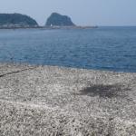 【高松漁港】熊本エギングポイント